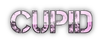 Font Capture It Cupid Logo Preview