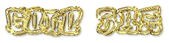 Font RoteFlora Gold Bar Logo Preview