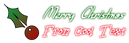 Font SF Burlington Script Christmas Symbol Logo Preview