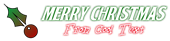 Font BOOTLE Christmas Symbol Logo Preview