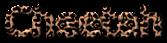 Font B Titr Cheetah Logo Preview
