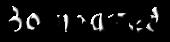 Font Bonzai Bovinated Logo Preview