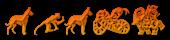 Font Chinese Zodiac TFB Sushi Logo Preview