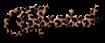Font Chopin Script Cheetah Logo Preview