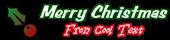 Christmas Symbol Logo Style