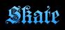 Skate Logo Style