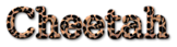 Font DejaVu Serif Cheetah Logo Preview