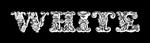 White Logo Style