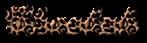 Font Ford script Cheetah Logo Preview