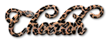 Font Freebooter Script Cheetah Logo Preview