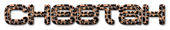 Font MetroDF Cheetah Logo Preview