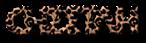 Font Metrolox Cheetah Logo Preview