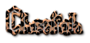 Cheetah Logo Style