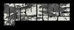 Font Pincoya Black Grunge Logo Preview