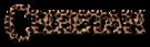 Font Ringbearer Cheetah Logo Preview