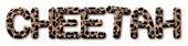 Font TPF Rubber Ducky Cheetah Logo Preview