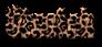 Font Tablhoide Cheetah Logo Preview