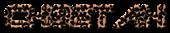 Font Terminator 2 Cheetah Logo Preview