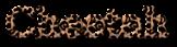 Font Titr Cheetah Logo Preview