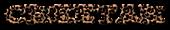 Font Yahoo! Cheetah Logo Preview