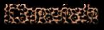 Font Computerfont Cheetah Logo Preview