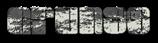 Font Elvis Grunge Logo Preview