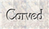 Font Goodfish Carved Logo Preview