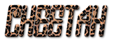Font Jealousy Cheetah Logo Preview