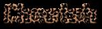 Font MacType Cheetah Logo Preview