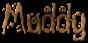 Font Magician Muddy Logo Preview