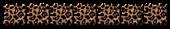 Font Radio Cheetah Logo Preview