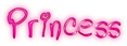 Princess Logo Style